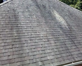 What are those black stains on my roof?
