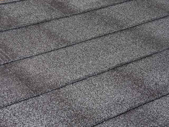 Shingle Profile